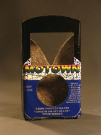 45iPodcases, fundas hechas con discos de vinilo